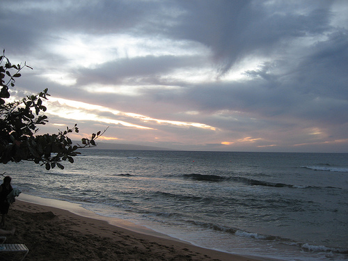 Maui Trip.